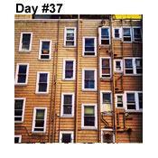 Day Thirty-Seven: Window Treatment